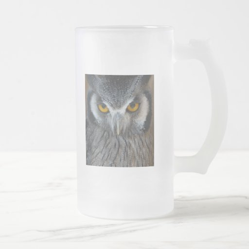 Macro Black and White Owl Picture 16 Oz Frosted Glass Beer Mug