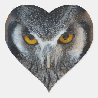Macro Black and White Owl Stickers