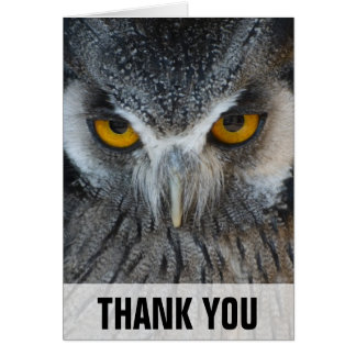 Macro Black and White Owl Thank You Card