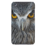 Macro Black and White Scops Owl Barely There iPod Case