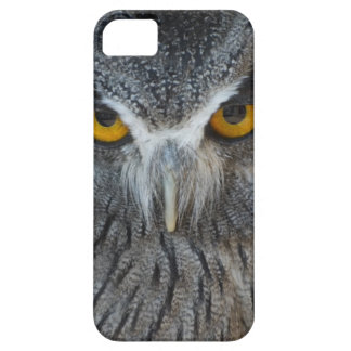 Macro Black and White Scops Owl iPhone 5 Covers