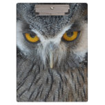 Macro Black and White Scops Owl Clipboards