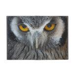 Macro Black and White Scops Owl Cases For iPad Mini