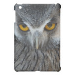 Macro Black and White Scops Owl Cover For The iPad Mini