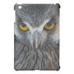 Macro Black and White Scops Owl Cover For The iPad Mini