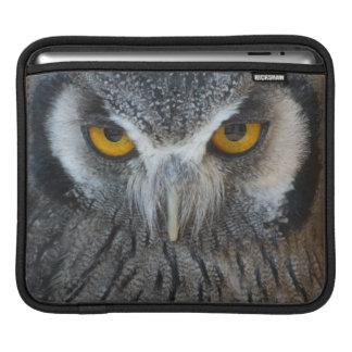 Macro Black and White Scops Owl iPad Sleeve
