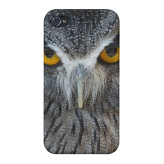 Macro Black and White Scops Owl iPhone 4 Cases