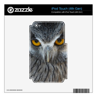 Macro Black and White Scops Owl Skins For iPod Touch 4G