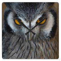 Macro Black and White Scops Owl Square Wall Clock