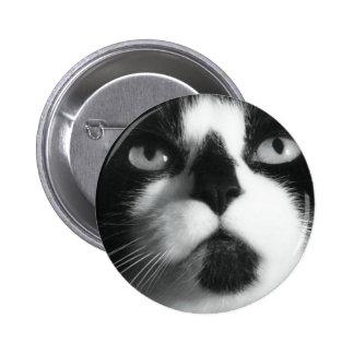 Macro Cat Buttons