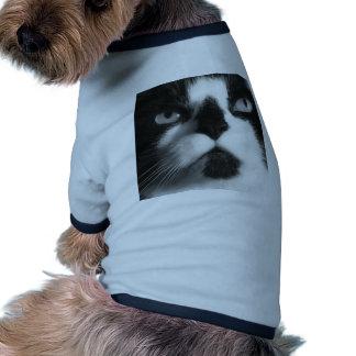 Macro Cat Pet T-shirt