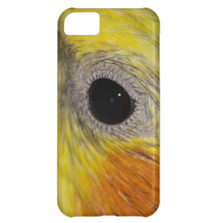 Macro Close Up Photo Eye Male Cockatiel Case For iPhone 5C
