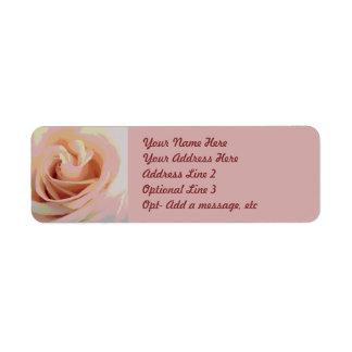 Macro color de rosa rosada del melocotón etiqueta de remite