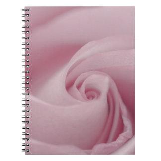 Macro color de rosa rosada libretas