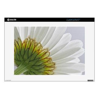 Macro Daisy Photo Skin For Laptop