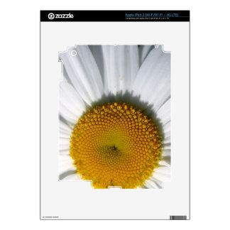 Macro daisy picture Ipad Skin
