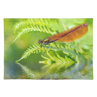 Macro damselfly on fern above water placemat