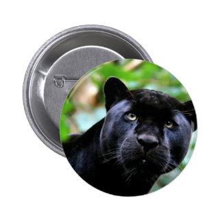 Macro de la pantera negra pin redondo de 2 pulgadas
