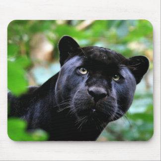 Macro de la pantera negra tapete de raton