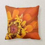 Macro de una flor anaranjada del Zinnia Almohadas