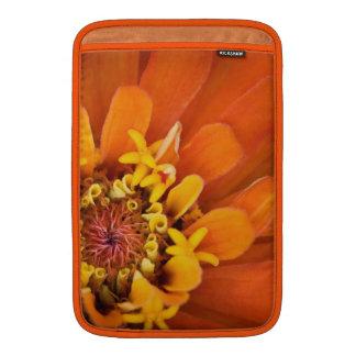 Macro de una flor anaranjada del Zinnia Fundas Para Macbook Air
