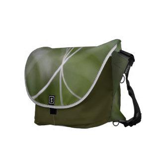 Macro de una hoja verde de la palmera bolsa de mensajeria