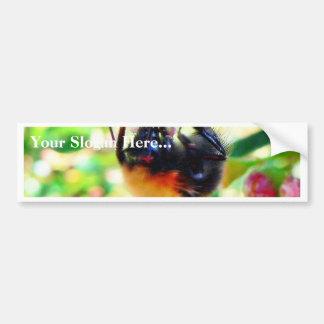 Macro del abejorro etiqueta de parachoque