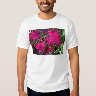 Macro del coleo camisas