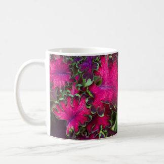 Macro del coleo taza
