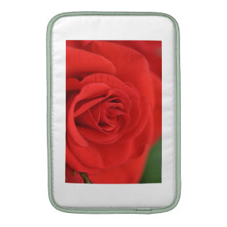 Macro del rosa rojo fundas MacBook