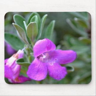 Macro False Foxglove Flower Mouse Pad
