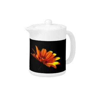 Macro floral anaranjada de la mandarina en negro