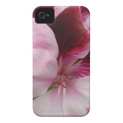 Macro Flower iPhone 4 Etuis