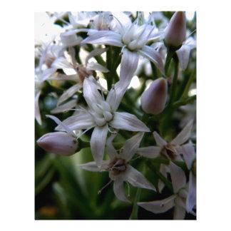Macro Flower Letterhead Template