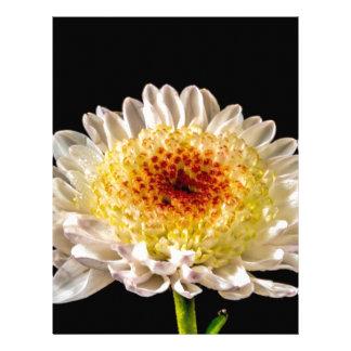 Macro Flower Personalized Letterhead