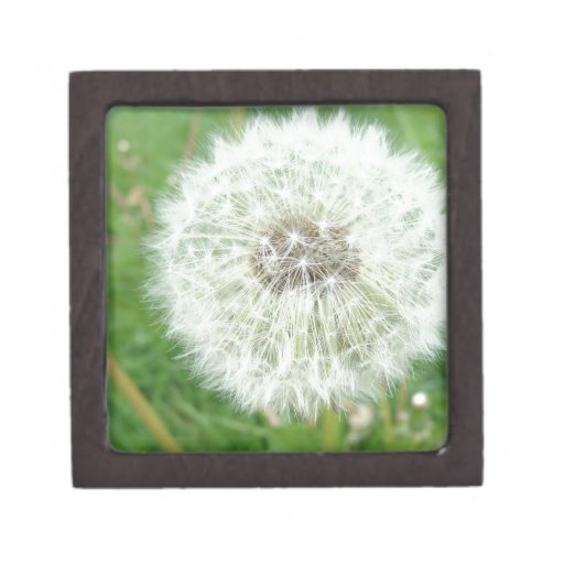 Macro Flower Premium Trinket Box