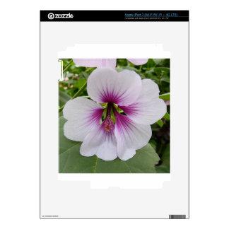 Macro Flower Decal For iPad 3