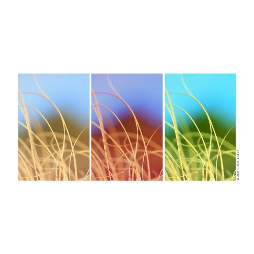 Macro Grass Trio print
