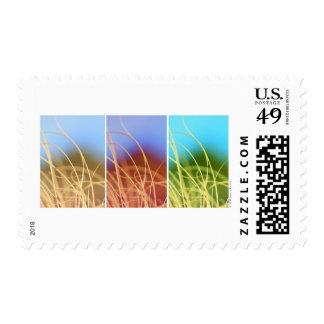 Macro Grass Trio Stamps