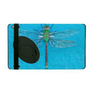 Macro Green Dragonfly on Blue Background iPad Case