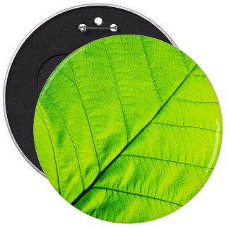 Macro Green Leaf Button