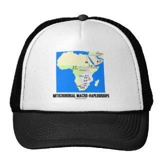 Macro-Haplogroups mitocondrial (genealogía de MRCA Gorros