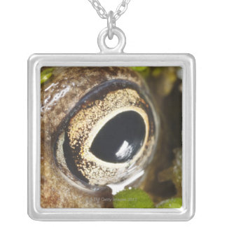 Macro; Horizontal; Colour; Color; Nobody Silver Plated Necklace