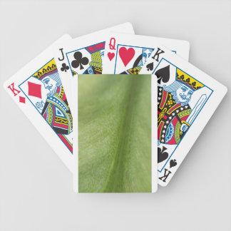 Macro Leaf Bicycle Playing Cards