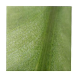 Macro Leaf Tile