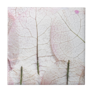 macro leaves background tile