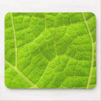Macro Mallow leaf Mouse Pad