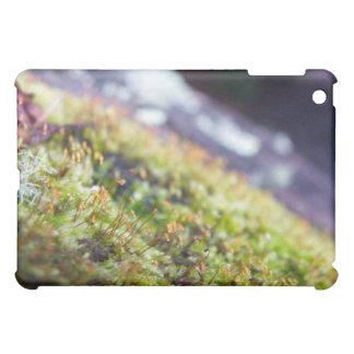 Macro Moss iPad Mini Cases