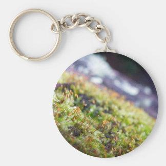 Macro Moss Keychain
