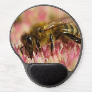 Macro occidental de la abeja de la miel